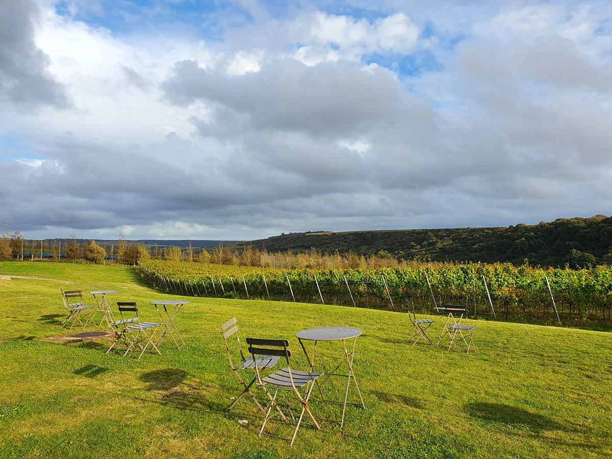 Staying at a Vineyard in East Sussex: Rathfinny Wine Estate Review - The World in My Pocket